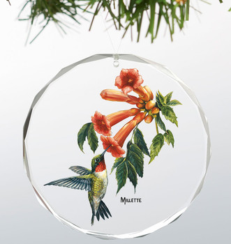 Summer Ruby Throated Hummingbird Round Glass Christmas Tree Ornaments, Set of 6
