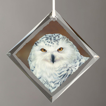 Elegance Snowy Owl Bird Diamond Shape Glass Christmas Tree Ornaments, Set of 6