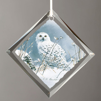 On the North Wind Snowy Owl Bird Diamond Shape Glass Christmas Tree Ornaments, Set of 6