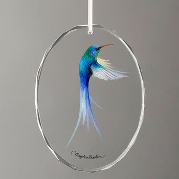 Swallow Tailed Hummingbird Oval Glass Christmas Tree Ornaments, Set of 6