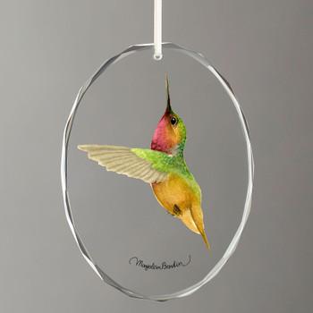 Bumble Bee Hummingbird Oval Glass Christmas Tree Ornaments, Set of 6