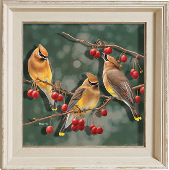 Crabapple Bandits Cedar Waxwing Birds I Framed Illusions Art Print Wall Art with Cream Colored Wood Frame