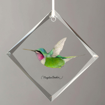 White Bellied Woodstar Hummingbird Diamond Shape Glass Christmas Tree Ornaments, Set of 6