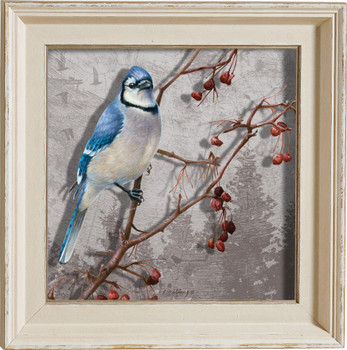 Blues Brothers Bluejay Bird Framed Illusions Art Print Wall Art with Cream Colored Wood Frame