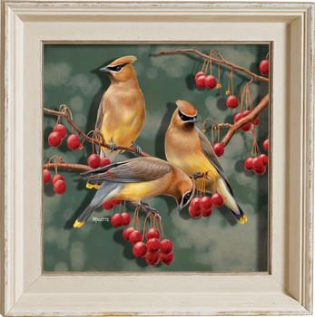 Crabapple Bandits Cedar Waxwing Birds II Framed Illusions Art Print Wall Art with Cream Colored Wood Frame