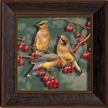 Crabapple Bandits Cedar Waxwing Birds II Framed Illusions Art Print Wall Art with Walnut Wood Frame