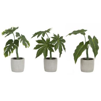 Foliage Silk Plants with Decorative Planters, Set of 6