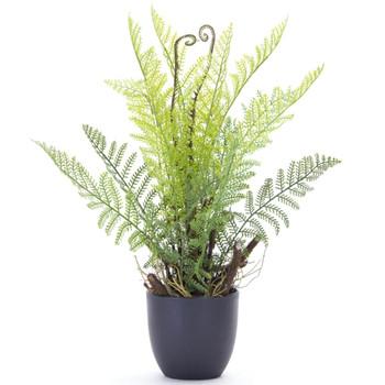 "18"" Fern Silk Plants with Decorative Planters, Set of 2"
