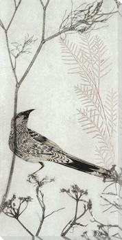 Wattlebird Resting on a Branch Wrapped Canvas Giclee Art Print Wall Art