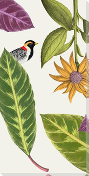 Artistry of Nature IV Bird Wrapped Canvas Giclee Art Print Wall Art