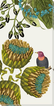 Artistry of Nature II Bird Wrapped Canvas Giclee Art Print Wall Art