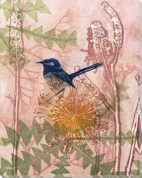Little Blue Wren Bird Wrapped Canvas Giclee Art Print Wall Art