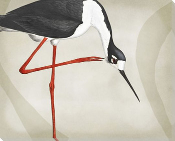 Wading Birds 2 Wrapped Canvas Giclee Art Print Wall Art