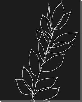 Botanical Line Drawing 1 Wrapped Canvas Giclee Art Print Wall Art