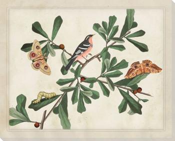 Botanical Scene Wrapped Canvas Giclee Art Print Wall Art