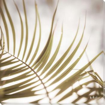 Palm Leaf III Wrapped Canvas Giclee Art Print Wall Art