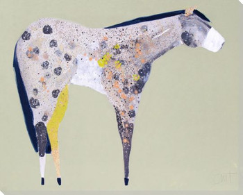 Horse No 60 Wrapped Canvas Giclee Art Print Wall Art