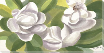 Magnolia Flowers on Green Wrapped Canvas Giclee Print Wall Art