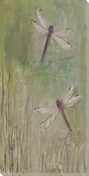 Wetlands #7 Dragon Flies Wrapped Canvas Giclee Print Wall Art