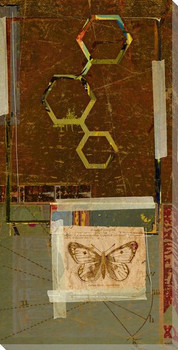 Science Moth with Symbolic Compound Wrapped Canvas Giclee Print