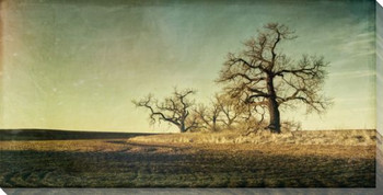 Guardians of the Field Scenic View Wrapped Canvas Giclee Print