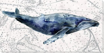 Deep Sea Watercolor Whale Wrapped Canvas Giclee Print