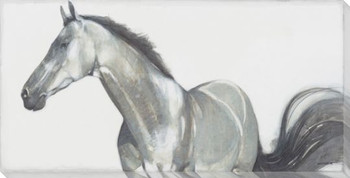Grace Horse Wrapped Canvas Giclee Print Wall Art