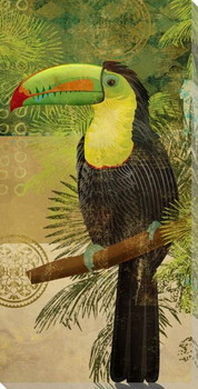 Toucan Bird Wrapped Canvas Giclee Print Wall Art