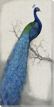 Peacock Blue I Wrapped Canvas Giclee Print Wall Art