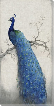 Peacock Blue II Wrapped Canvas Giclee Print Wall Art