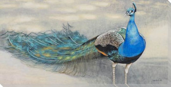 Humble Peacock Bird Wrapped Canvas Giclee Print Wall Art