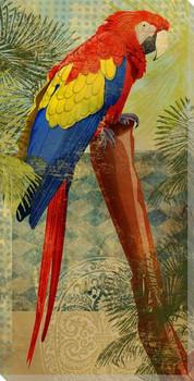 Perching Parrot Bird Wrapped Canvas Giclee Print Wall Art