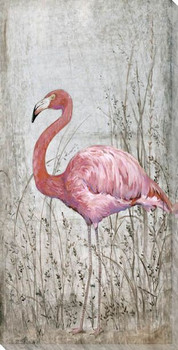 American Flamingo Bird II Wrapped Canvas Giclee Print Wall Art