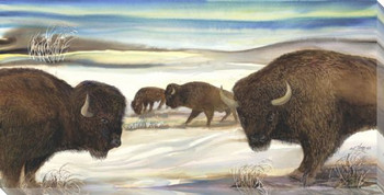 Bison in the Snow Wrapped Canvas Giclee Print Wall Art