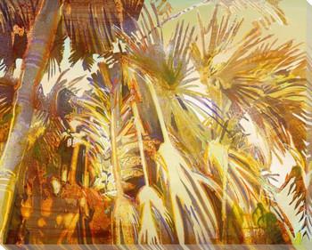 Shag Palms Wrapped Canvas Giclee Print Wall Art
