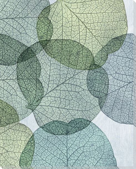 Leaves Intersecting Cool 2 Wrapped Canvas Giclee Print Wall Art