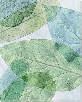 Leaves Intersecting Cool 3 Wrapped Canvas Giclee Print Wall Art