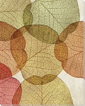 Leaves Intersecting Warm 2 Wrapped Canvas Giclee Print Wall Art
