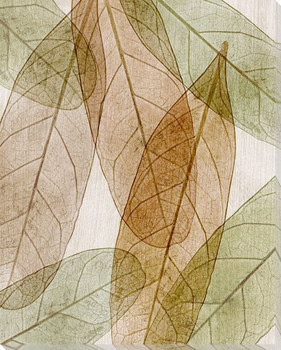 Leaves Intersecting Neutral 1 Wrapped Canvas Giclee Print Wall Art