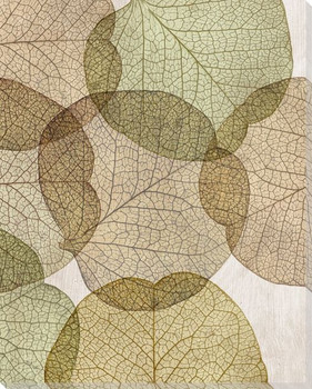 Leaves Intersecting Neutral 2 Wrapped Canvas Giclee Print Wall Art