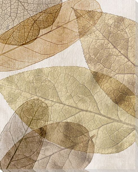 Leaves Intersecting Neutral 3 Wrapped Canvas Giclee Print Wall Art