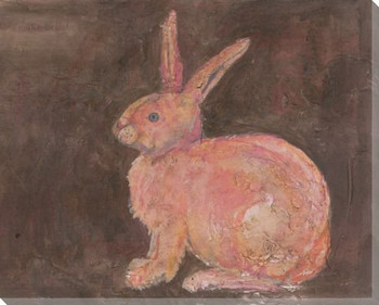 Pink Rabbit Wrapped Canvas Giclee Print Wall Art