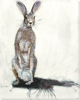 Jack the Rabbit Wrapped Canvas Giclee Print Wall Art