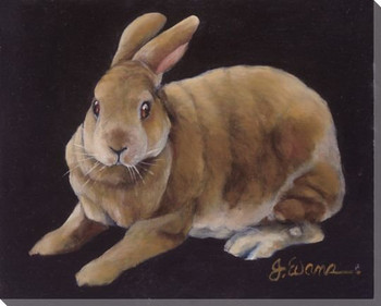 Jack Bunny Rabbit Wrapped Canvas Giclee Print Wall Art