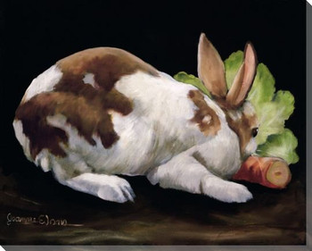 A Simple Supper Bunny Rabbit Wrapped Canvas Giclee Print Wall Art