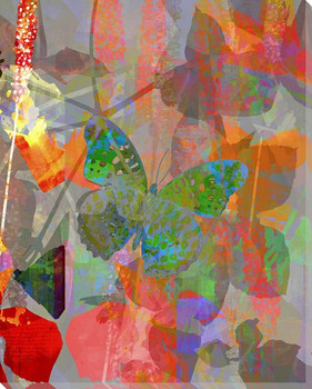 Garden Color Study Butterfly 3 Wrapped Canvas Giclee Print