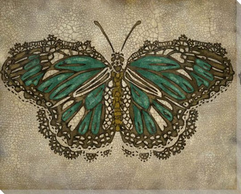 Lace Wing Butterfly II Wrapped Canvas Giclee Print Wall Art