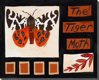 The Tiger Moth Butterfly Wrapped Canvas Giclee Print Wall Art