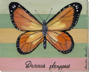 Danaus Plexippus Butterfly Wrapped Canvas Giclee Print Wall Art