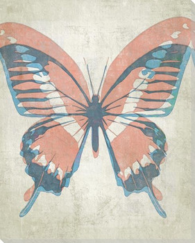 Letterpress Butterfly Aqua Salmon Wrapped Canvas Giclee Print Wall Art